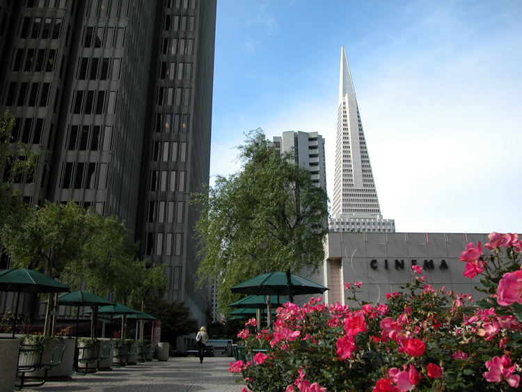 Upper Level Of The Embarcadero Center Lo Ng West Toward The Cinema And Transamerica Pyramid