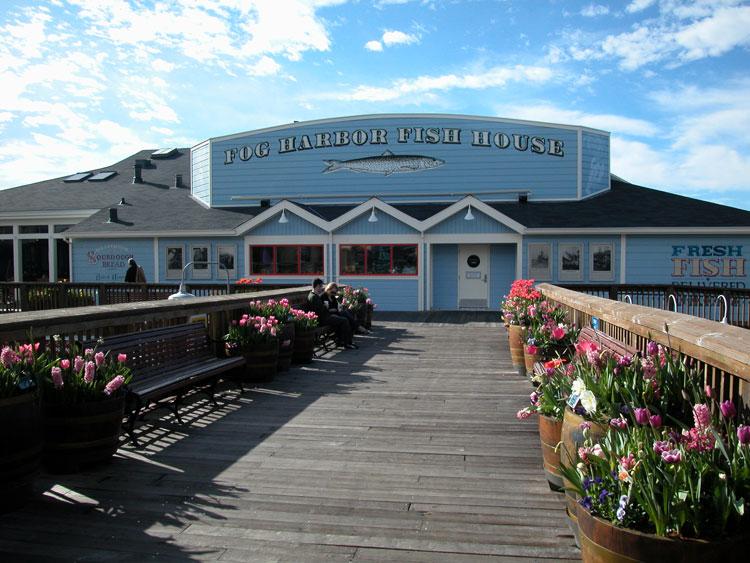 Fog harbor fish house 28 images fog harbor fish house for Fog harbor fish house san francisco