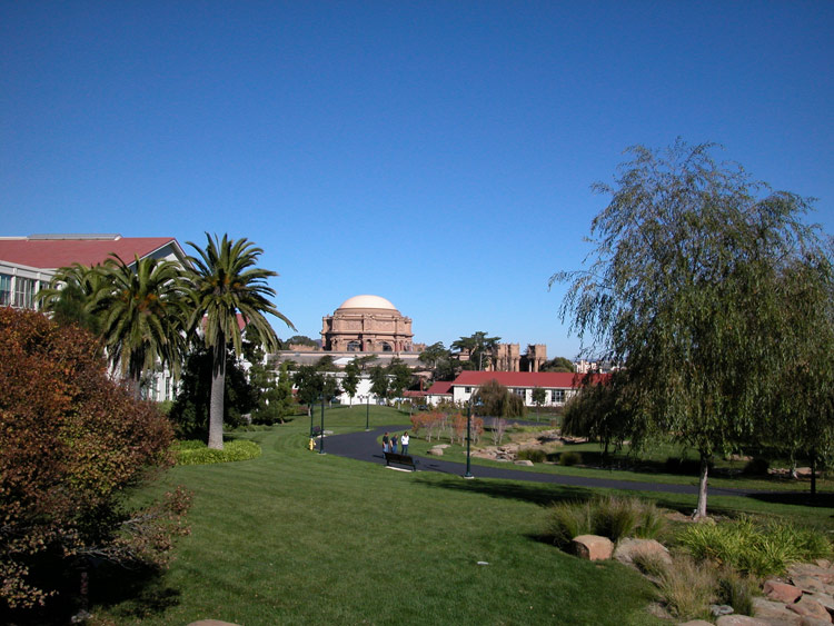 http://www.sanfranciscodays.com/photos/large/presidio-park.jpg