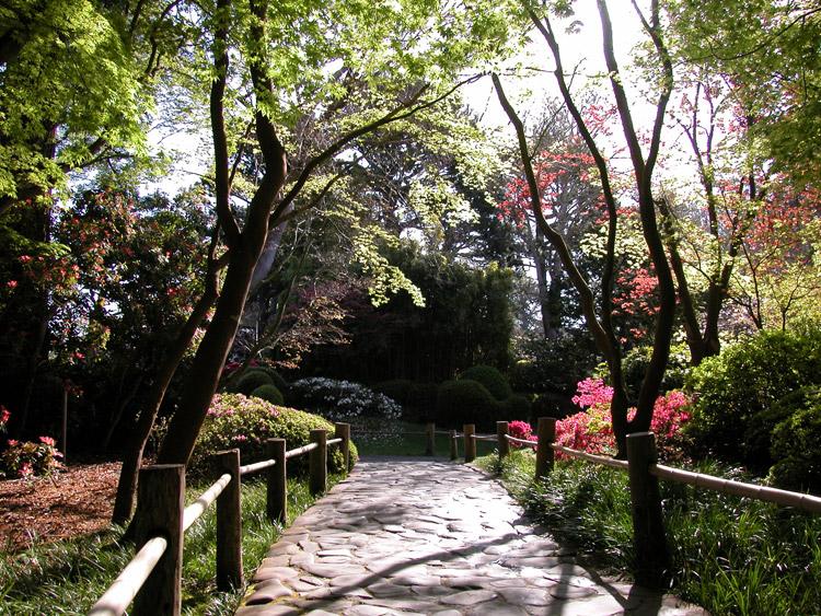 Golden gate park middle san francisco neighborhoods for Japanese garden path
