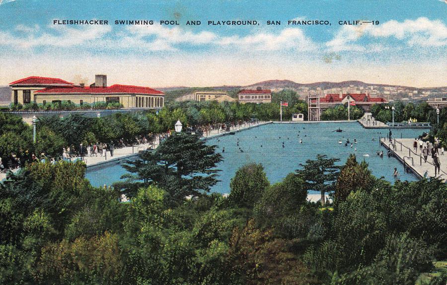 Postcards From San Francisco Fleishhacker Pool